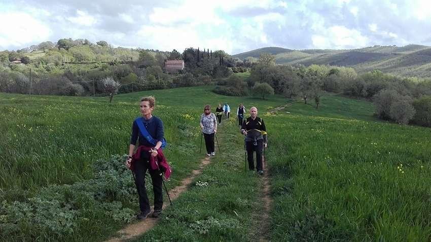 nordic-walking-outdoor