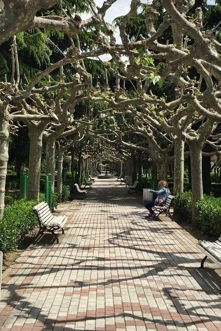 Un angolo di verde nel cuore della città di León