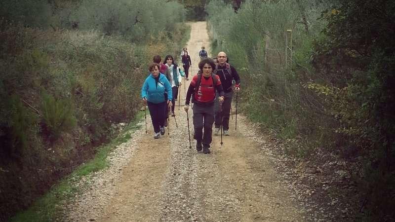 Leki - Guanti da Nordic Walking per Bastoncini Trigger1-System