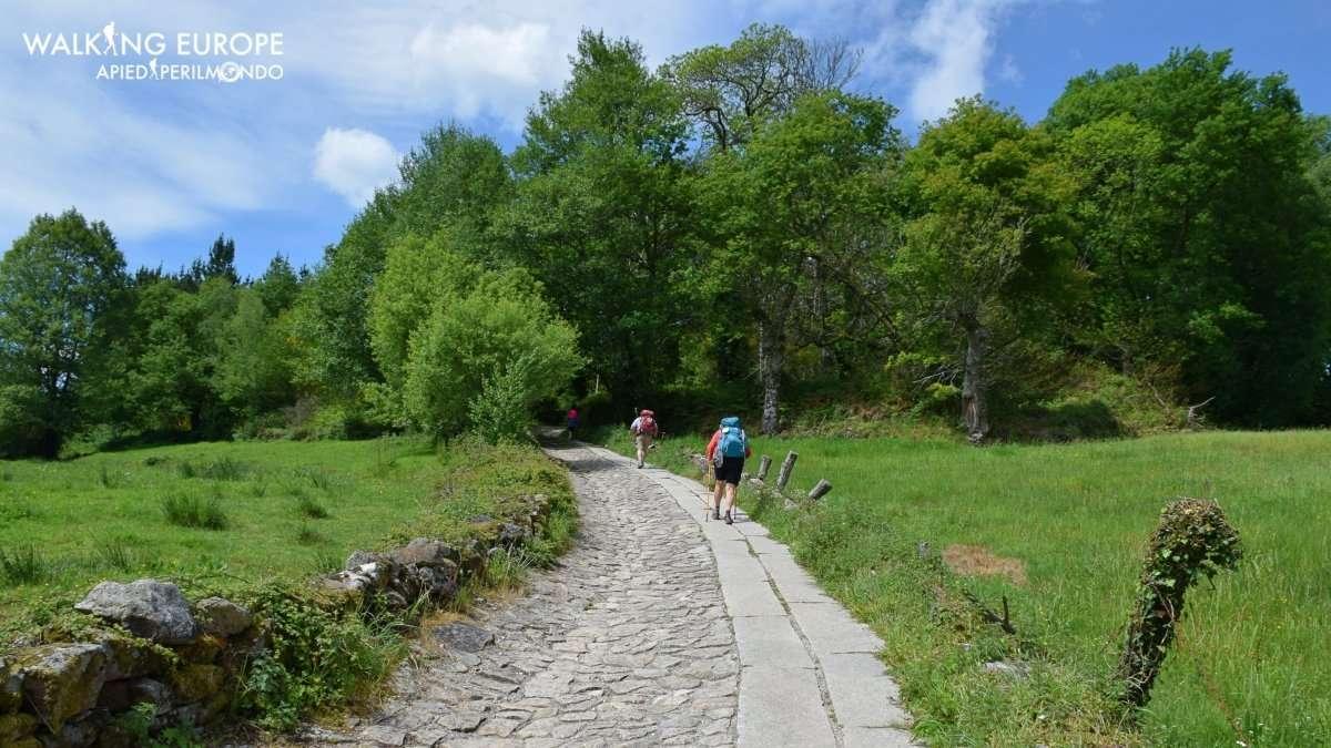 Cammino di Santiago da Sarria fotografico
