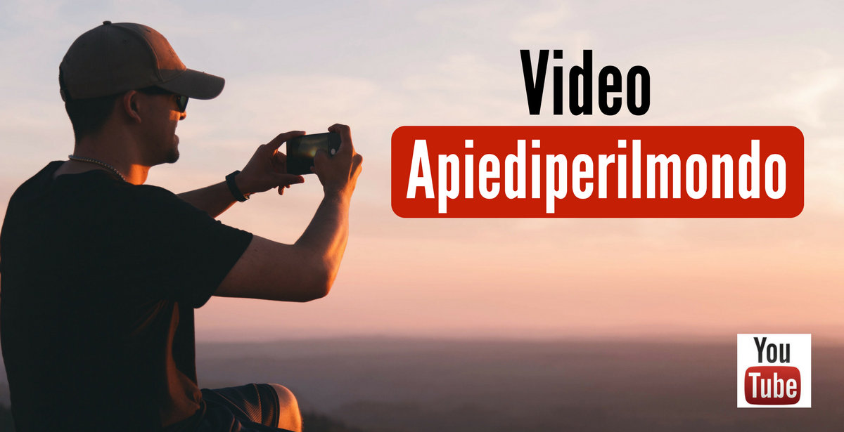 VIdeo apiediperilmondo