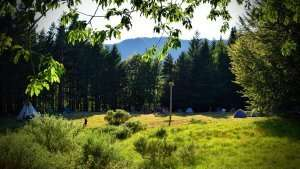 Solstizio d'estate ad Orsigna