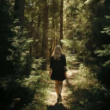 Camminare tra gli alberi