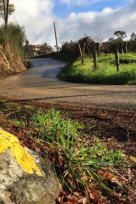Cammino Portoghese da Tui