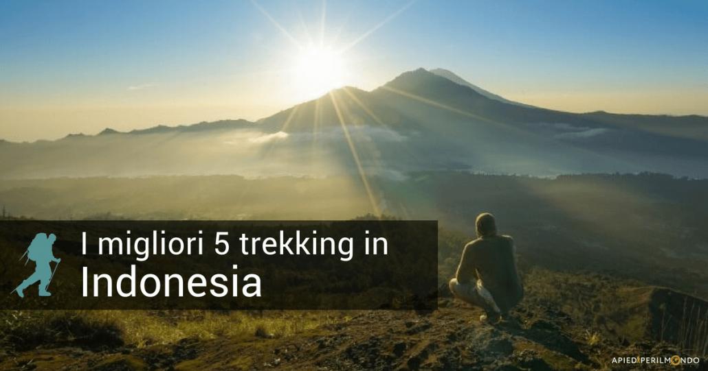 95d5dcc85a Ascesa al Monte Rijani, sentieri nell'isola di Komodo, o ancora l'alba sul  Monte Batur, a Bali, sono solo alcuni dei 5 migliori trekking in Indonesia,  ...