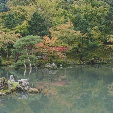 Giardino zen 2