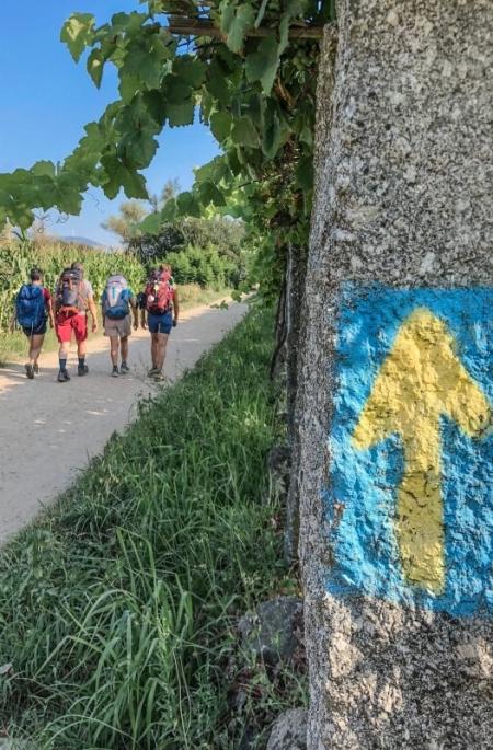 Organizziamo il tuo Cammino di Santiago da Tui