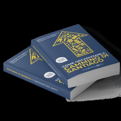 Libro Apiediperilmondo - Cammino di Santiago -2
